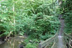 Treppen Schmalegger und Rinkenburger Tobel