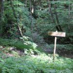 Waldschutzgebiet Glastobel