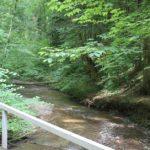 Wanderbruecke im Schmalegger und Rinkenburger Tobel