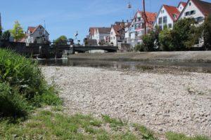 Badestelle Donauinsel Riedlingen