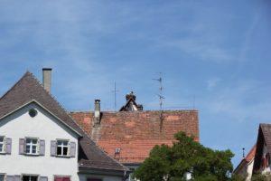 Stoerche Altstadt Riedlingen