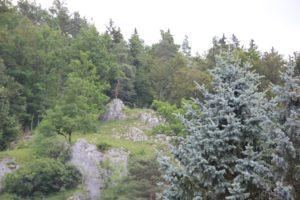 Ruine Burg Altgutenstein Donautal