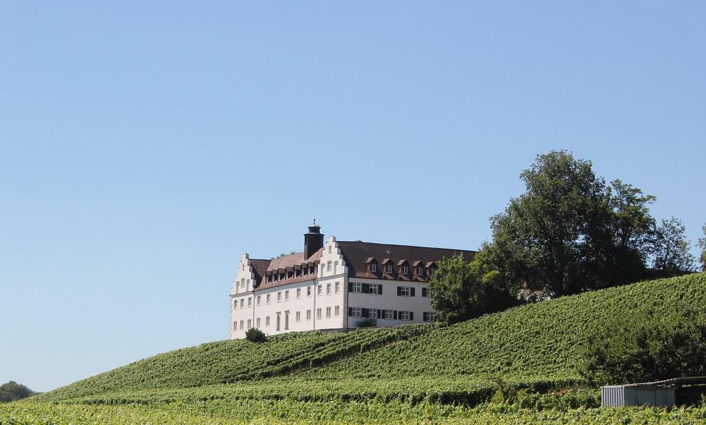 Schloss Hersberg Bergsporn