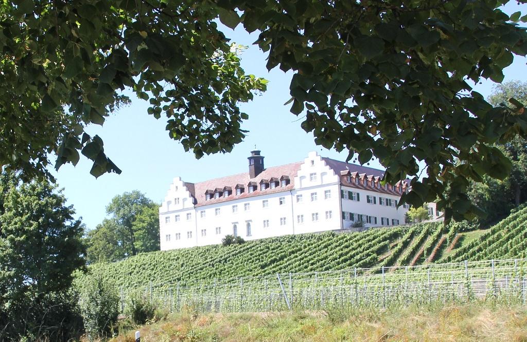 Schloss Hersberg Weinberg