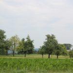 Bergplateau Wanderung Illmensee Wilhelmsdorf