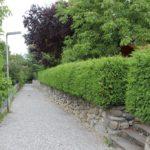 Klostermauer Kloster Baindt