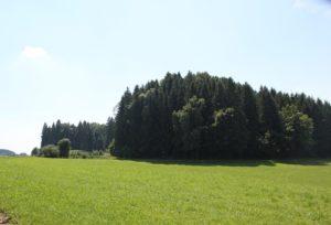 Burgberg Arnach