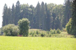 Wallunterbrechung Burgstall Huenlishofen