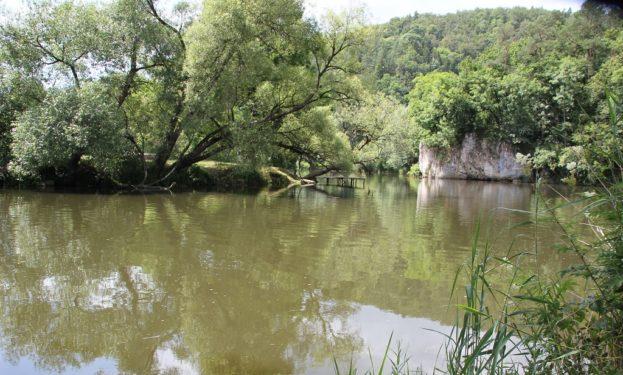 Badestelle Donau Gutenstein Dietfurt