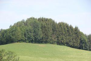 Burghuegel Finsterburg