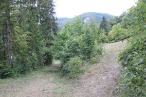 Aufstieg Burgruine Hausen im Tal