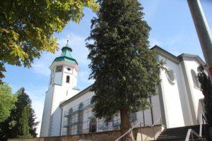 Kirche Gruenkraut St Gallus und Nikolaus