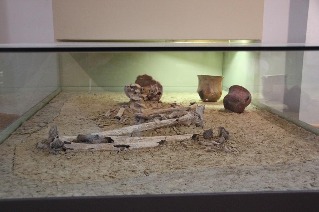 Menschliche Knochen Steinzeit