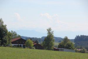 Aussicht auf Alpen Waldspielplatz Vogt