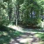 Kletterparcours Rutsche und mehr Waldspielplatz Vogt