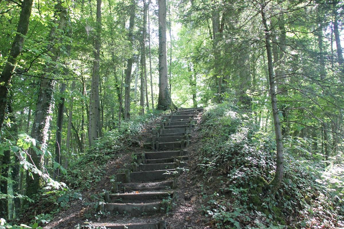 Treppe zur Haslachburg Lauratal