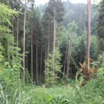 Steiler Ramsberg