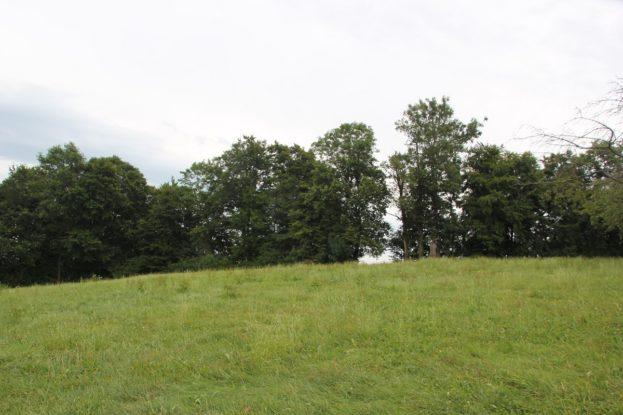 Burgstall unbekannter Burg