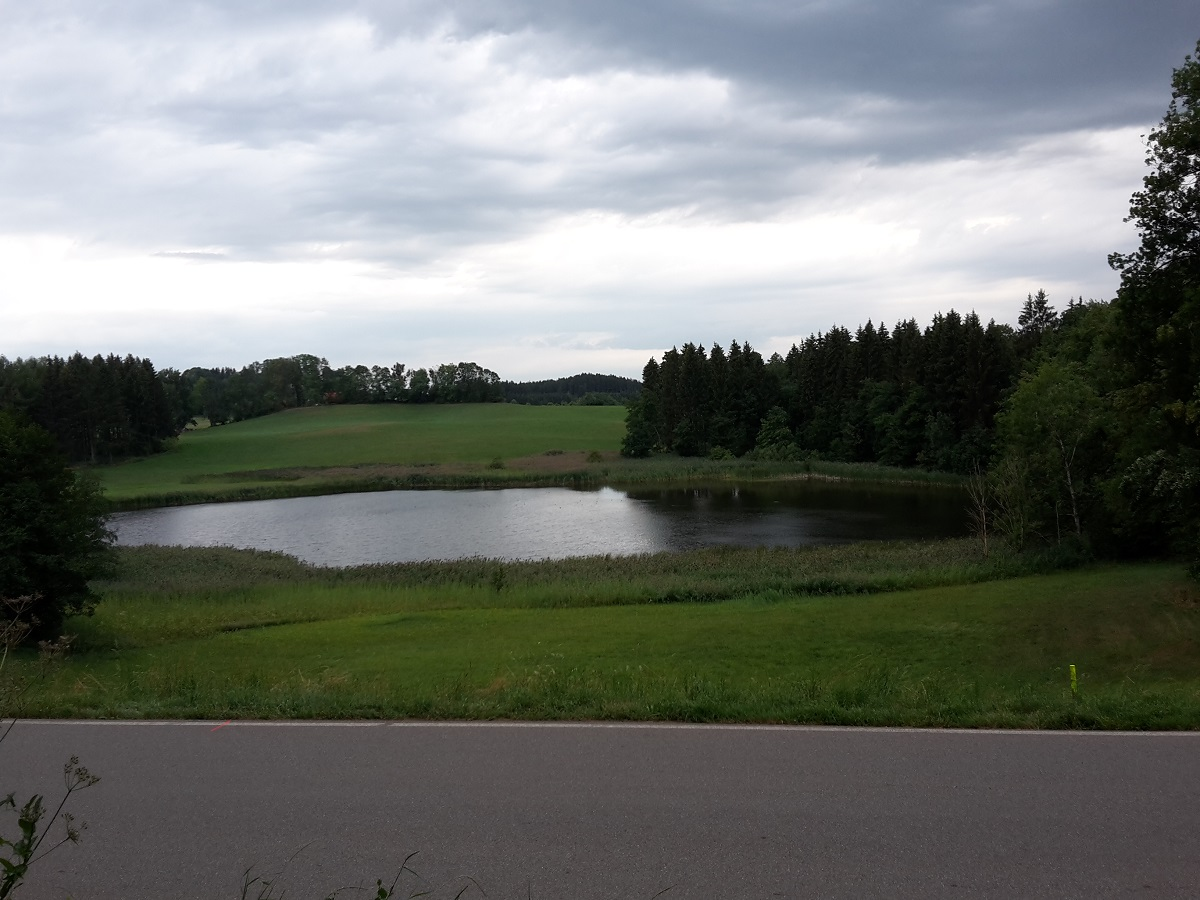 Unterer Schlossweiher Ratzenried