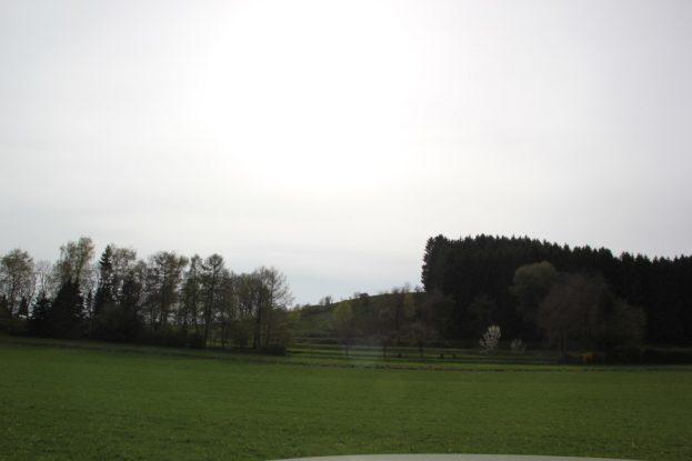 Blutsberg Altmannshofen