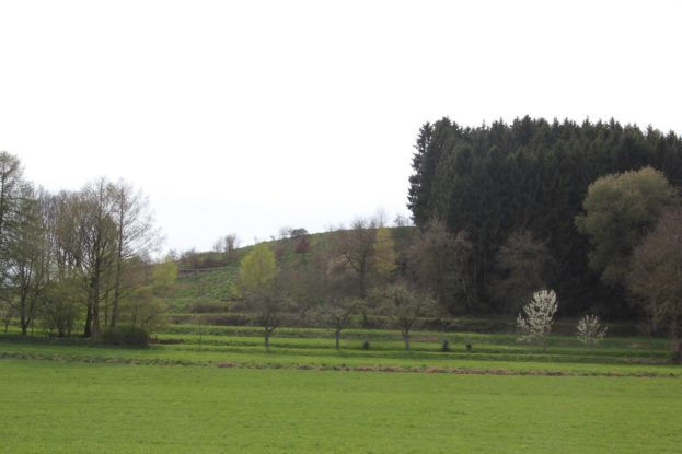 Blutsberg Plateau