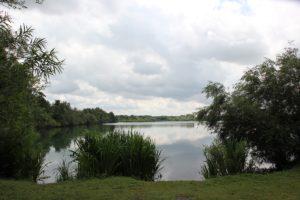 Natursee Laupheim Obersulmetingen