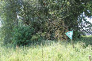 Naturschutzgebiet Wettenberger Hochmoor