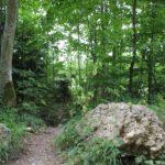 Zugang zum Forsthaus Holzweiher