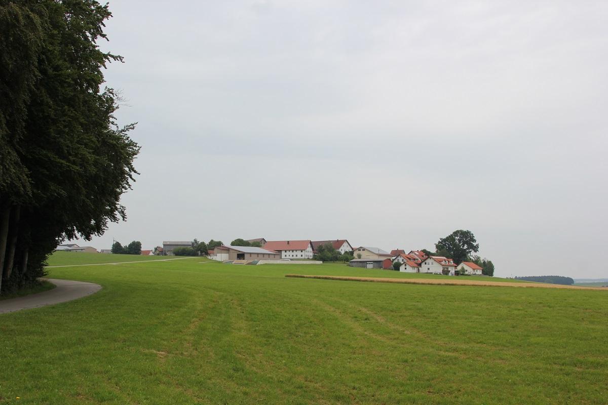 Oberschwarzach Burgstall Tannenberg