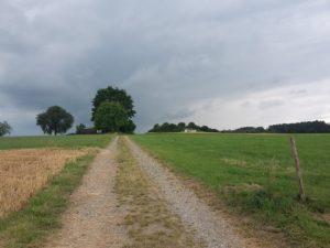 Burgstall Berkheim